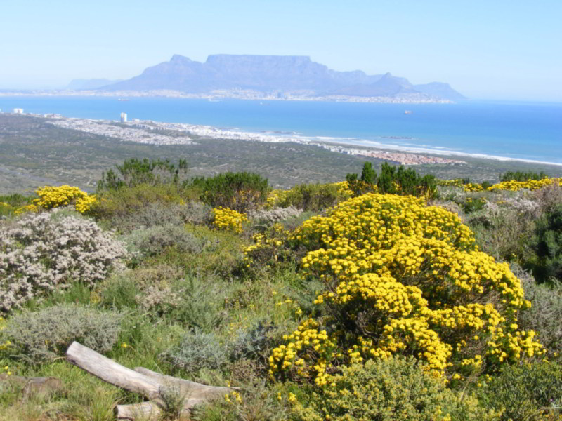 Beautiful Table Mountain view