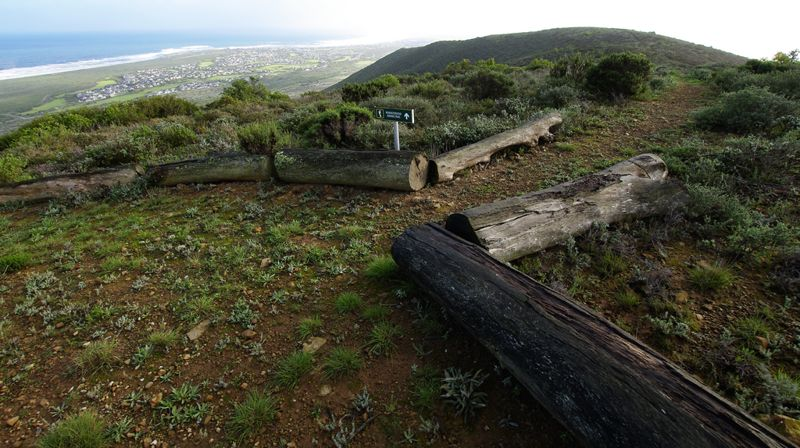 Start of Renosterveld Trail